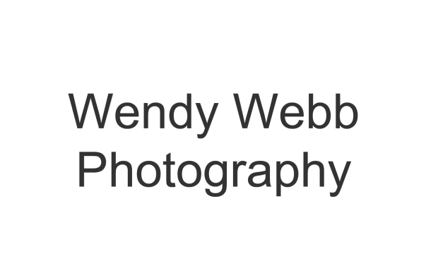 Wendy Webb Photography